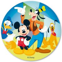 Disney kage print - Minnie Mouse