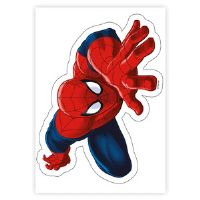 Spiderman kage print
